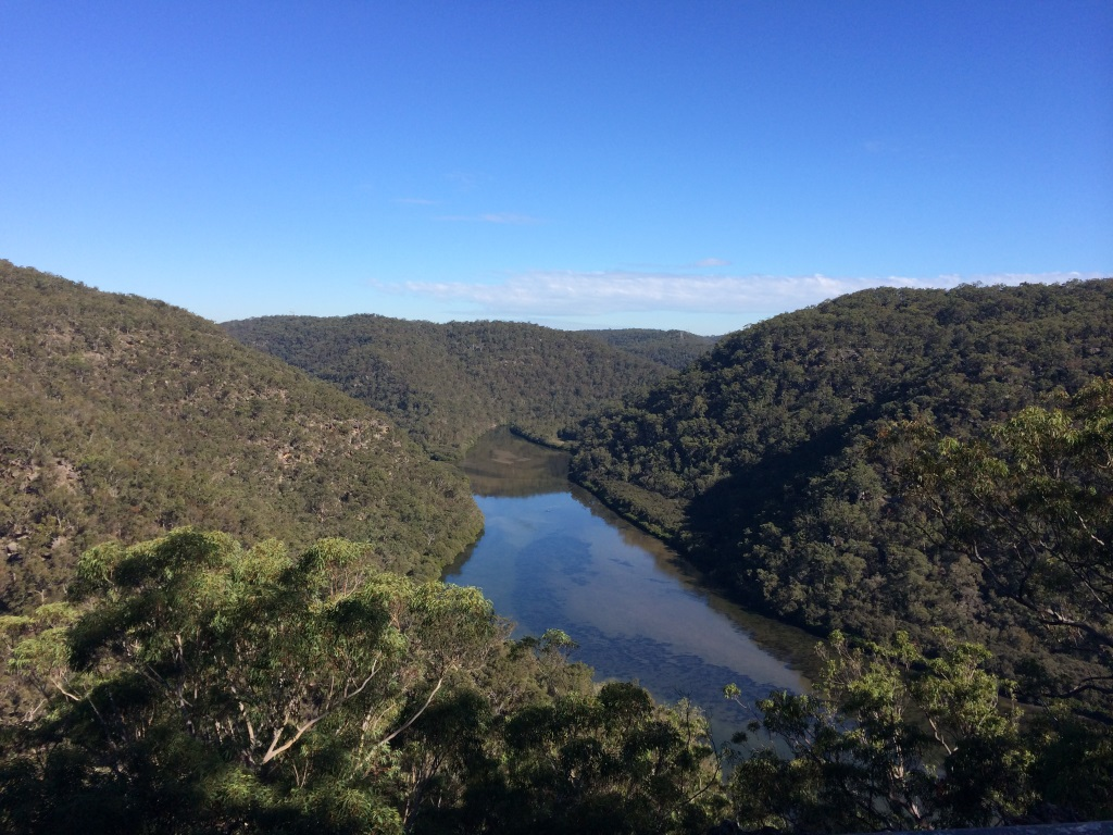 Best day trek's (and over nighter's) near Sydney