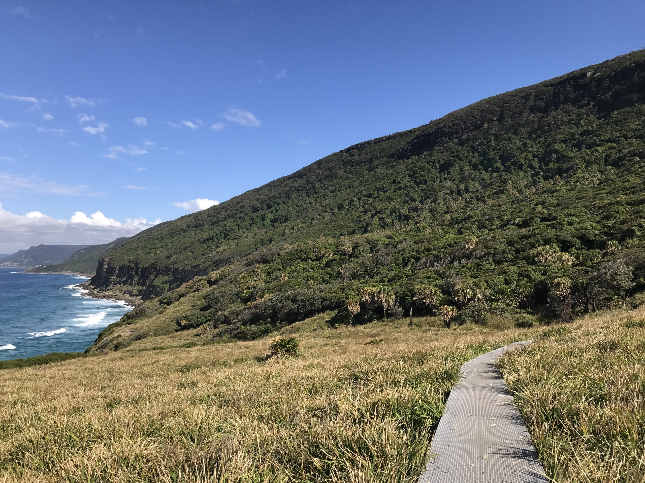 The Coast Track – In one day.