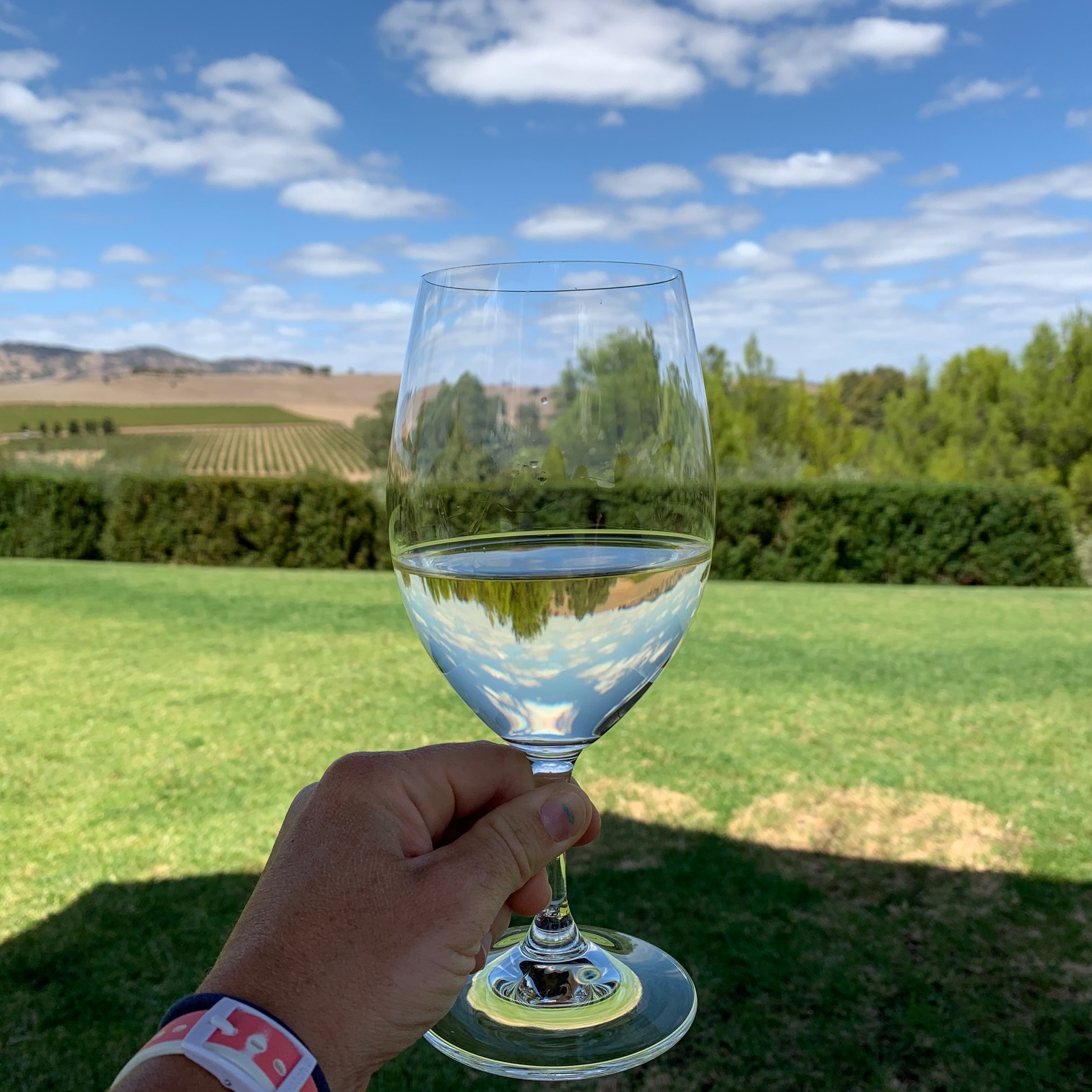 24 hours in the Barossa Valley, South Australia