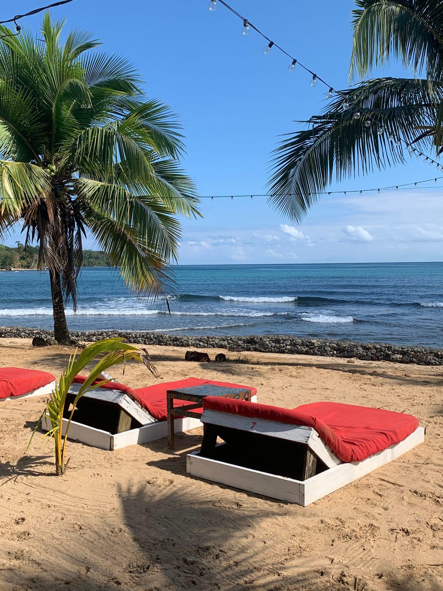 Coral, coffee and coronavirus in Bocas del Toro and Boquete, Panama