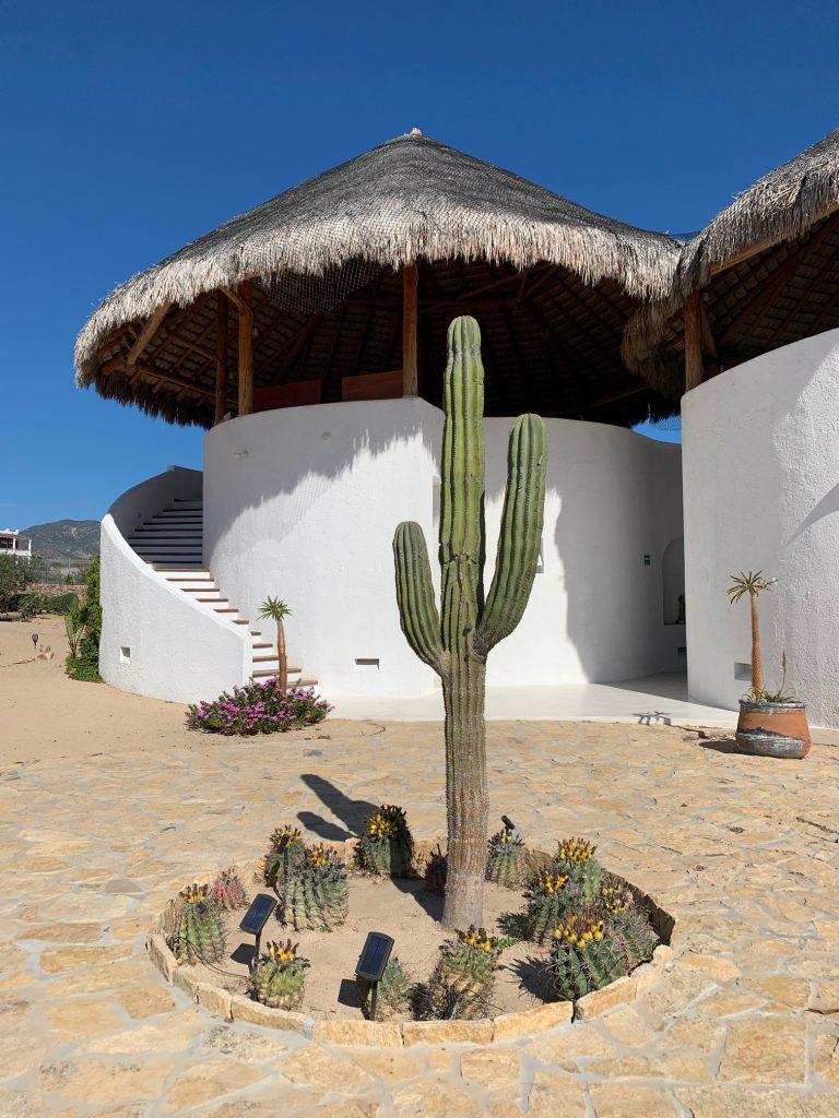 Casa Tara, La Ventana